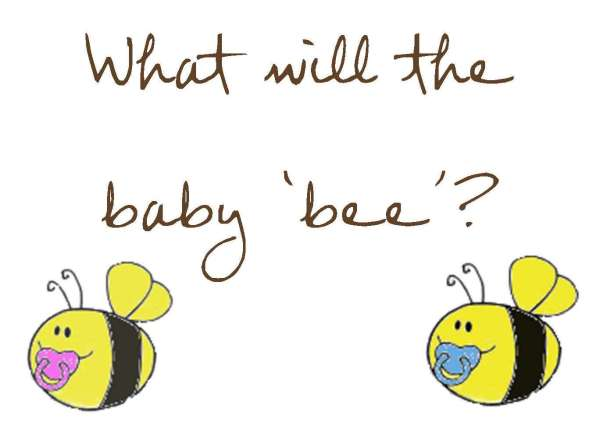 what will the baby 'bee'